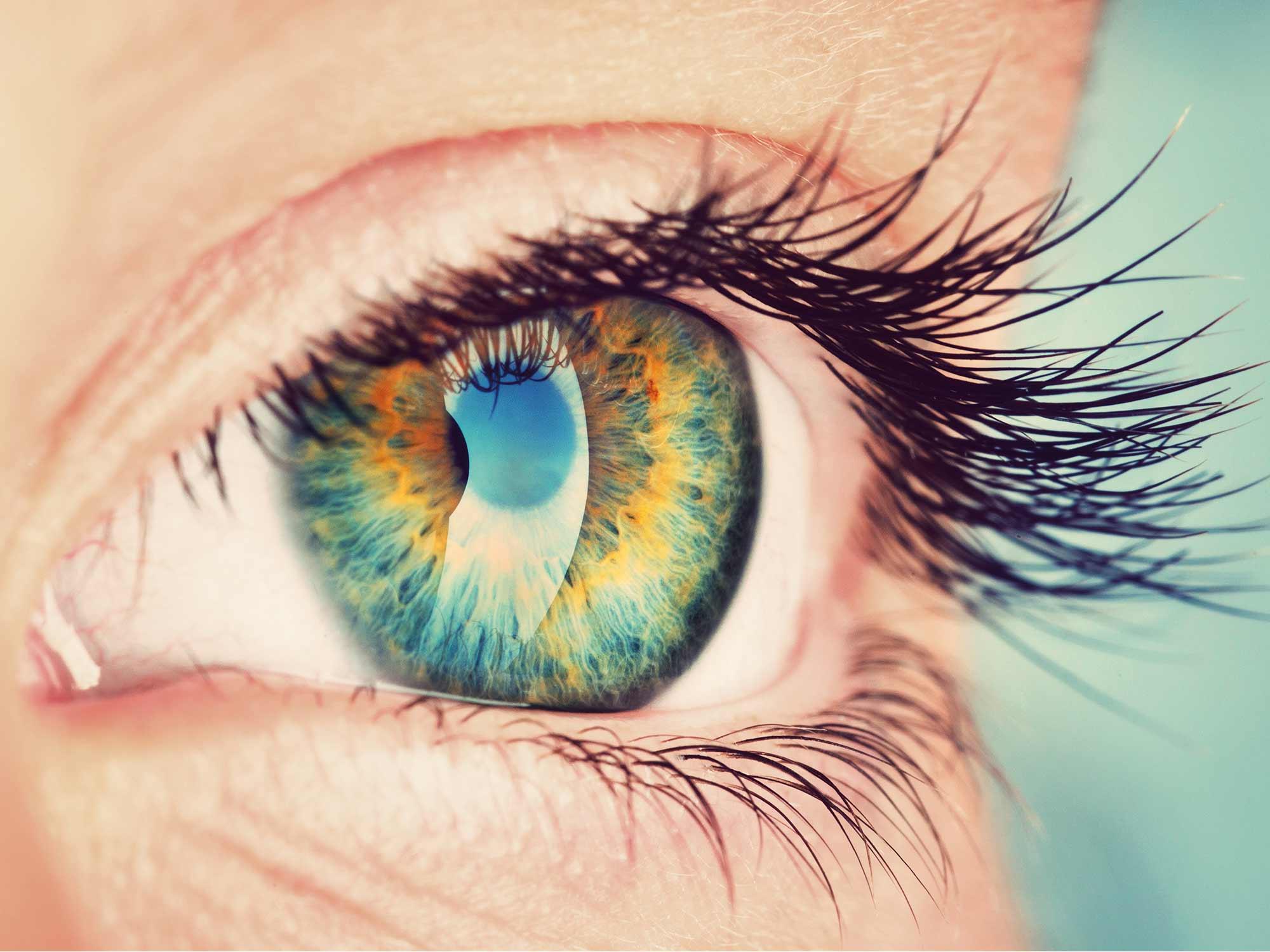 Sehtest Gleitsicht, brille Biedenkopf, Wallau Sonnenbrille, Kontaktlinsen Biedenkopf Wallau